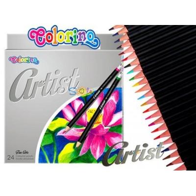 Карандаши цветные premium , серия Artist, очень мягкие, 24 цвета