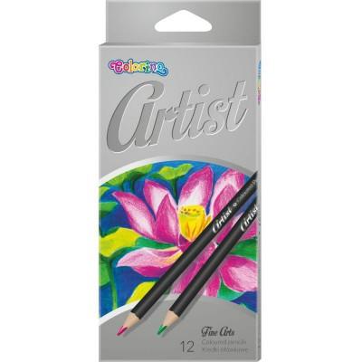 Карандаши цветные premium , серия Artist, очень мягкие, 12 цветов